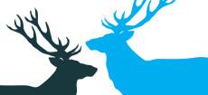 Weihnachtskarte Zwei Hirsche in Cyan und Dunkelgrau