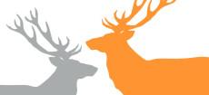 Weihnachtskarte Zwei Hirsche in Orange und Hellgrau