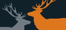 Weihnachtskarte Zwei Hirsche in Orange und Grau auf dunkelgrau