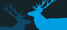 Weihnachtskarte Zwei Hirsche in cyan und blau auf dunkelgrau